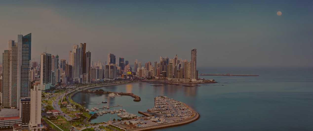 skyline-panama-brown-overlay.jpg